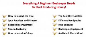 Beekeeping 101 course