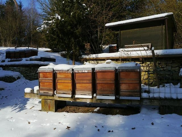 How to Winterize a beehive
