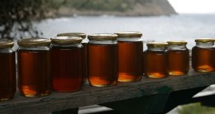 how to collect honey from a beehive