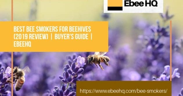 Top 10 Best Bee Smokers & Bee Hive Smokers for Sale 2019